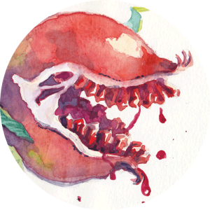 Thumbnail image of a killer pomegranate watercolor study
