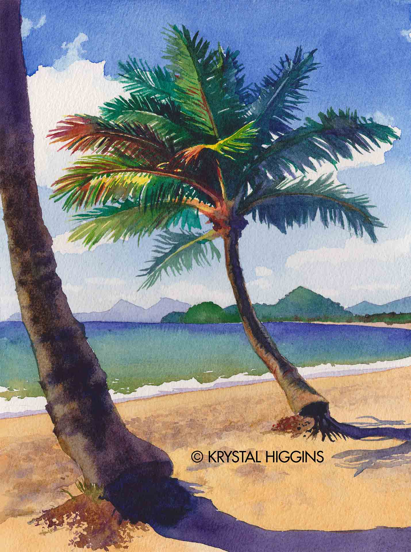 Watermarked image of palm tree watercolor from Cairns