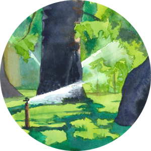 Circular crop thumbnail image of Deep in the Forest watercolour painting